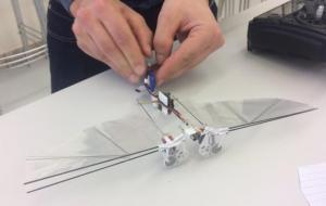 荷兰科学家已经开发出蜜蜂机器人DelFly 用来为植物授粉