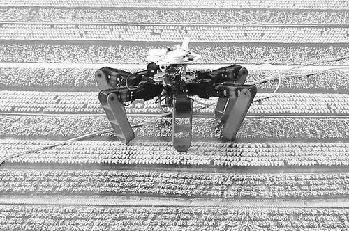 机器人像沙漠蚂蚁那样回家