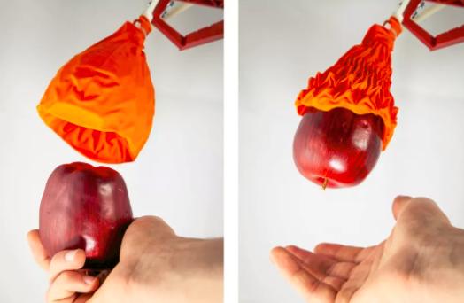 看起来像枯萎花朵的机器人抓手能抓取比自身重100倍的物体