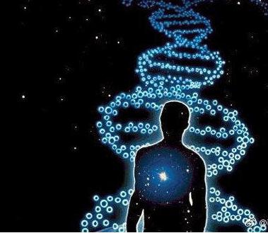 """比以往更像生命新研究用DNA分子组装类生命""""软机器人"""""""